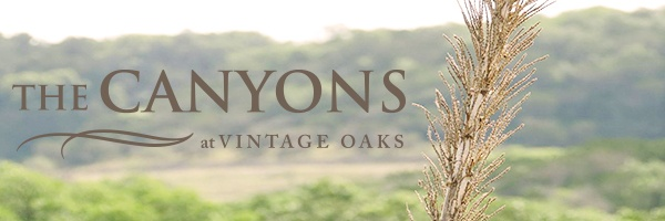 Canyons_New_Release_Masthead-1