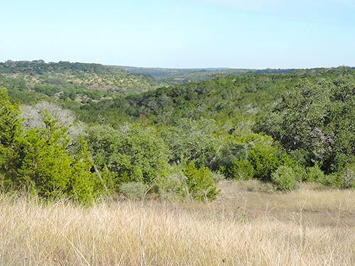 Timber_Ridge_buying_land