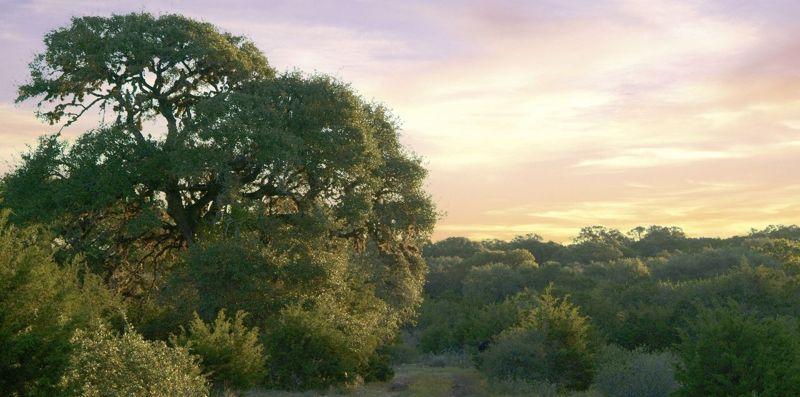 VO_Slider_Sunset.jpg