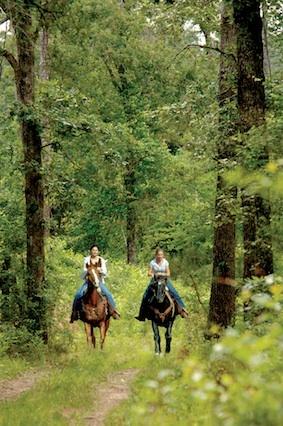 Vineyard Ranch at Vintage Oaks