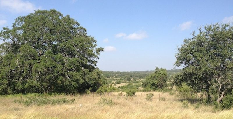 Vintage Oaks_Retire in Texas with a View