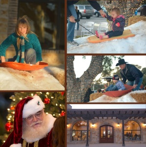Vintage Oaks Holiday Party Collage