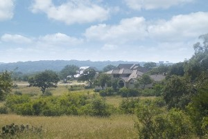 Vintage Oaks View