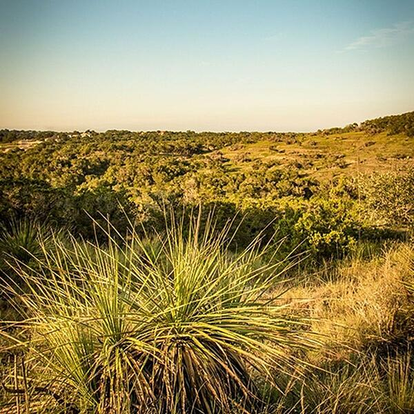 land for sale in hill country texas