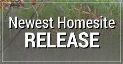 Newest_Homesite_Release.jpg