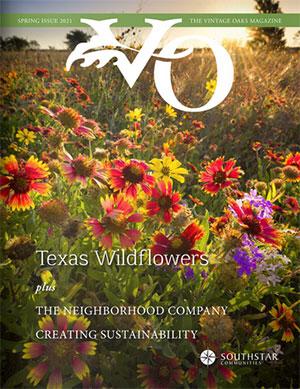 VO-Spring-Cover