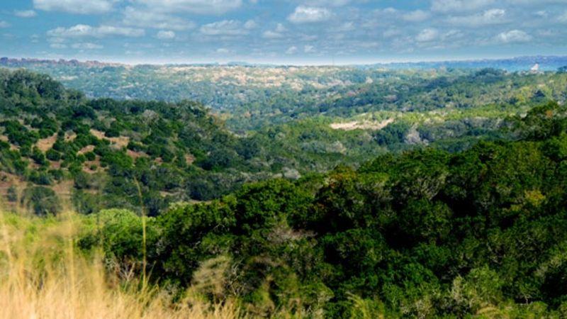 timber-ridge-1-1-1.jpg