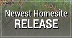 Newest Homesite Release