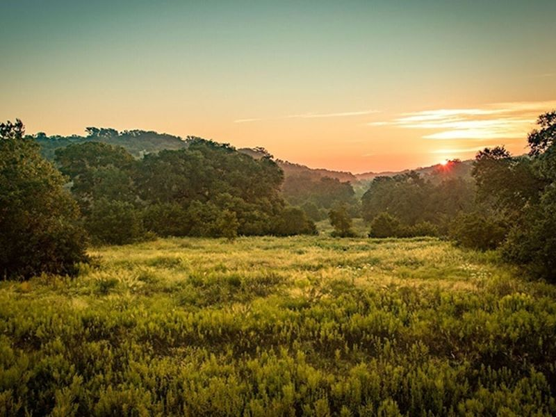 Texas Hill Country Land - Homesite #1476