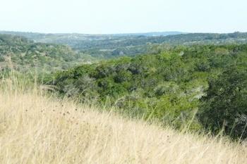 Timber Ridge at Vintage Oaks