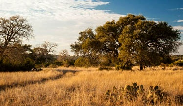 Texas Hill Country Land